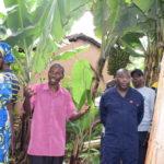 BURUNDI : Le Chef d'état visite un AGRI-ELEVEUR à NYARUNAZI, RUTEGAMA / MURAMVYA