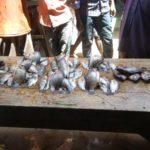BURUNDI : Etre poissonnier au Marché de BUBANZA