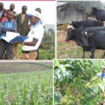 Le DG de l'ANACOOP visite les sociétés coopératives de Ngozi et Muramvya