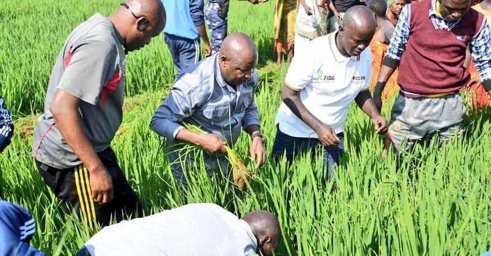 BURUNDI : Travaux champêtres sur un terrain à MWUMBA / NGOZI