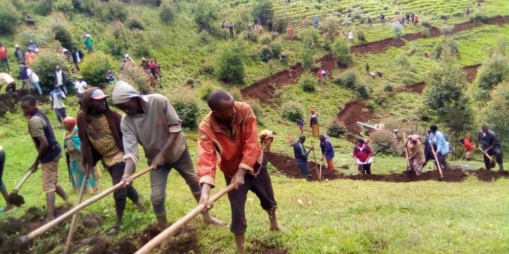 BURUNDI : Aménager des courbes de niveau et évaluer des coopératives à RUSAKA / MWARO