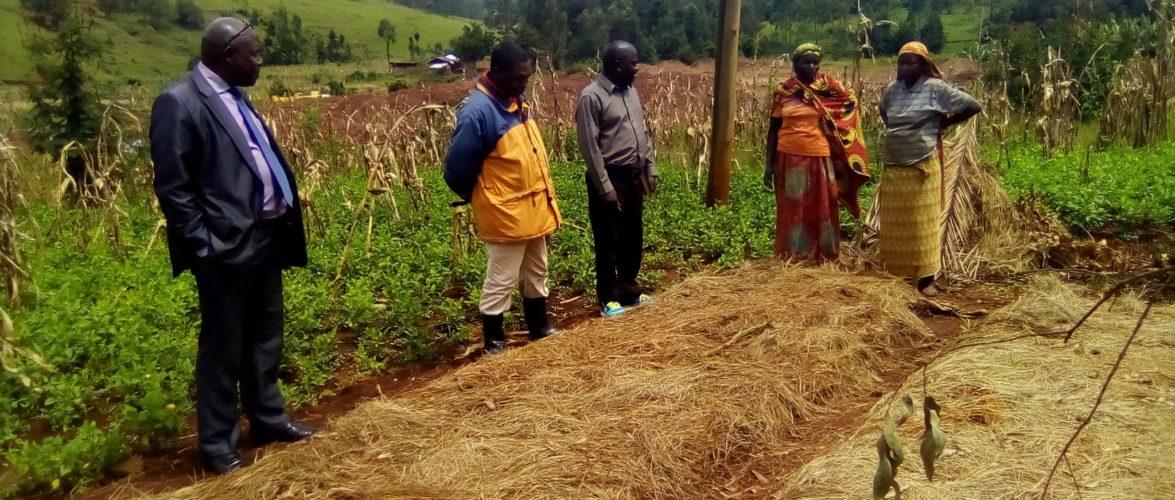 BURUNDI : Visite pour constater la production agricole locale / MWARO