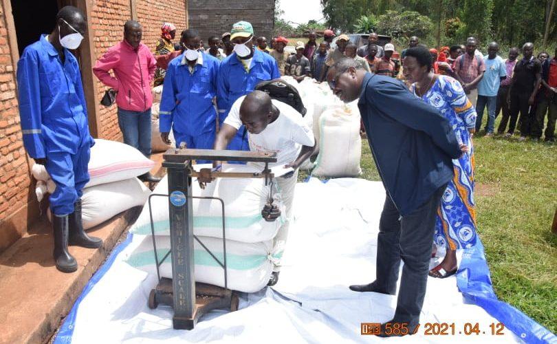 BURUNDI : Vérifier l'application de la mesure fixant le prix du maïs à 680 BIF