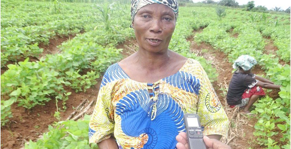 BURUNDI : Succès des coopératives SANGWE en commune RUMONGE
