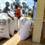 BURUNDI : La commune BUHIGA a emballé 5,5 tonnes de maïs / KARUSI