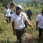 BURUNDI : TRAVAUX DE DEVELOPPEMENT COMMUNAUTAIRE - Sarclage autour des arbres plantés en colline MAKANO / CANKUZO