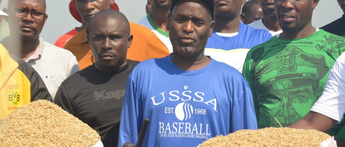 BURUNDI : TRAVAUX DE DEVELOPPEMENT COMMUNAUTAIRE – Récolter du riz en zone BUTERERE, NTAHANGWA / BUJUMBURA