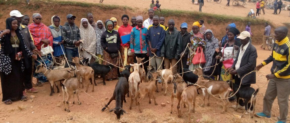 BURUNDI : La Coopérative EJOHEZA offre 18 chèvres à  MUSAVE / KAYANZA
