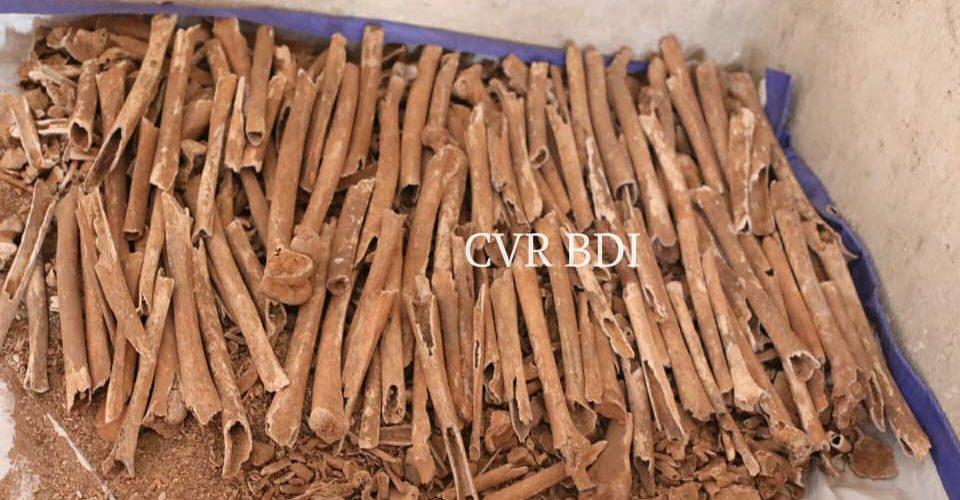 GENOCIDE CONTRE LES HUTU DU BURUNDI EN 1972 : 128 corps dans 87 fosses communes à GASURA et GISENYI / KIRUNDO