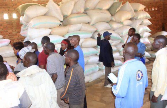 BURUNDI : Les caféiculteurs parlent du prix au kilo du café à BURAMBI / RUMONGE