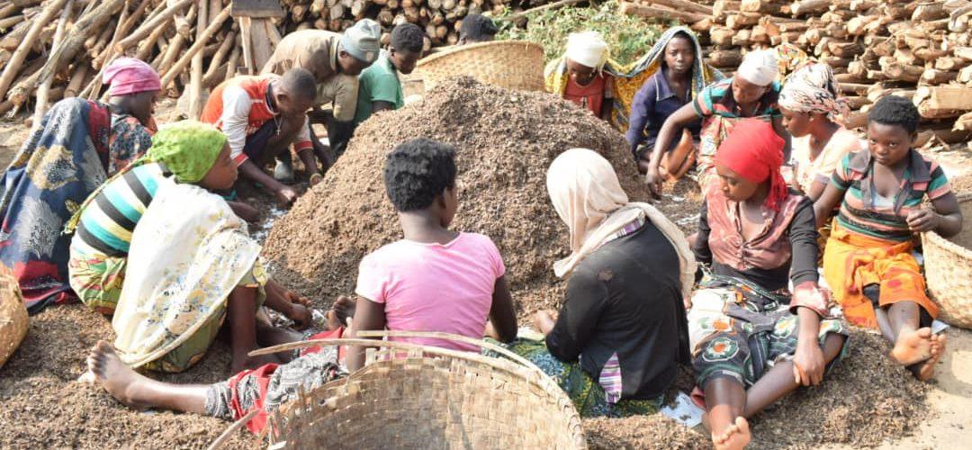 BURUNDI : Un entrepreneur produit 500 l d'huile de palme par mois à GAHIRO / RUTANA