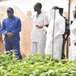 BURUNDI : Les muni-tubercules de pommes de terre de KIREMBA / BURURI