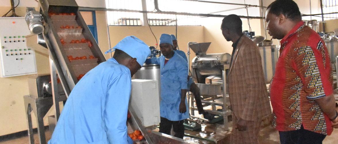 BURUNDI : Visite d'une coopérative de transformation de tomates à VYERWA / NGOZI