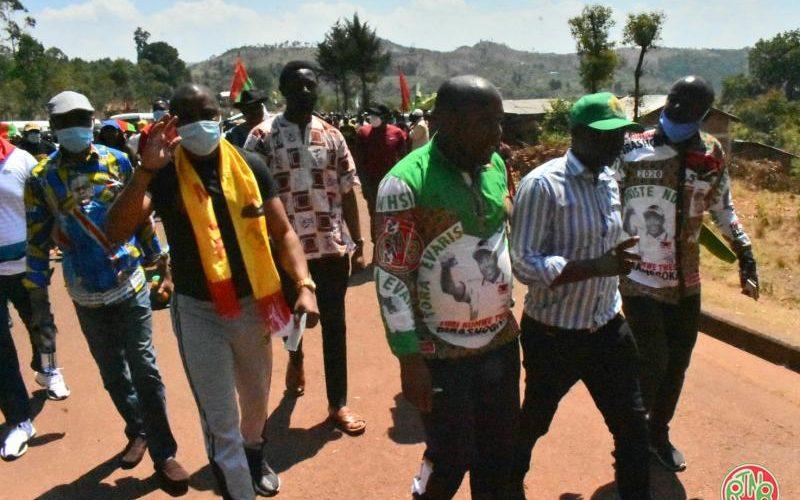 Les délégations venues soutenir les imbonerakure en excursion à l'intérieur du pays