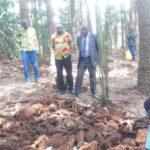 GENOCIDE CONTRE LES BAHUTU DU BURUNDI DE 1972 : Exhumation des corps des fosses communes à NYAMIYAGA,GITARA / MWARO