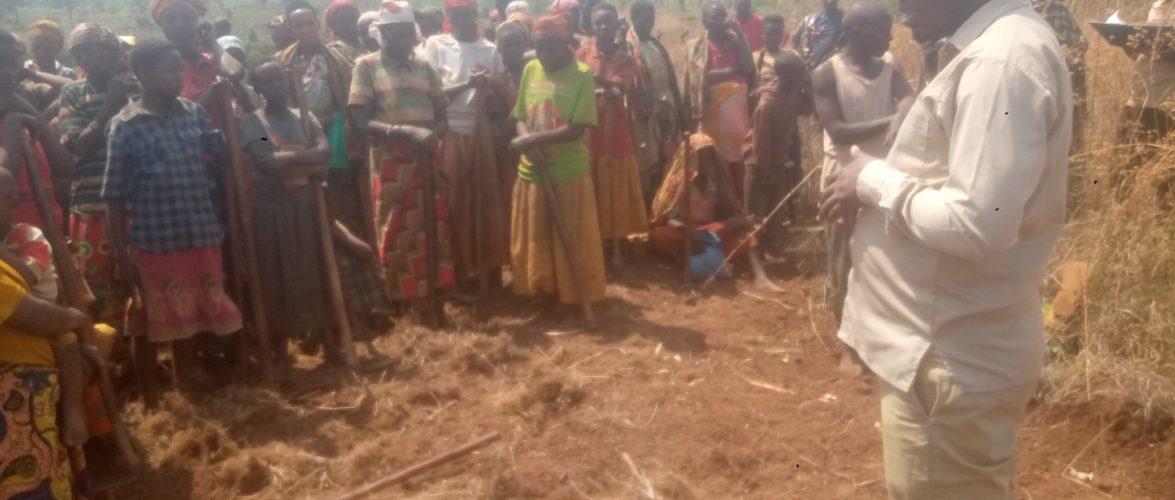 BURUNDI : Rencontre avec la coopérative SANGWE en colline GITANGA / NGOZI