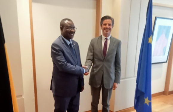 BURUNDI / BELGIQUE : Amb. NTAHIRAJA Thérence au Cabinet de Mme WILMES